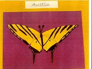 austins butterfly